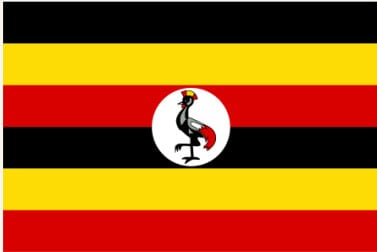 From the Ground: Uganda & Rwanda