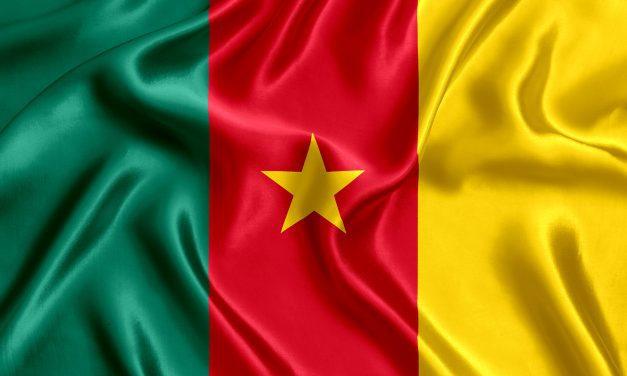 Cameroon accuses  humanitarian agencies  of meddling in politics